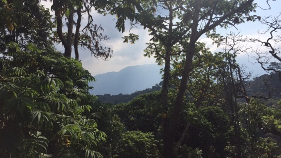 Nebil Nuradin_Rwanda11