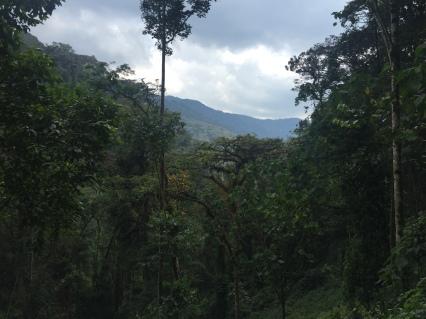 Nebil Nuradin_Rwanda12